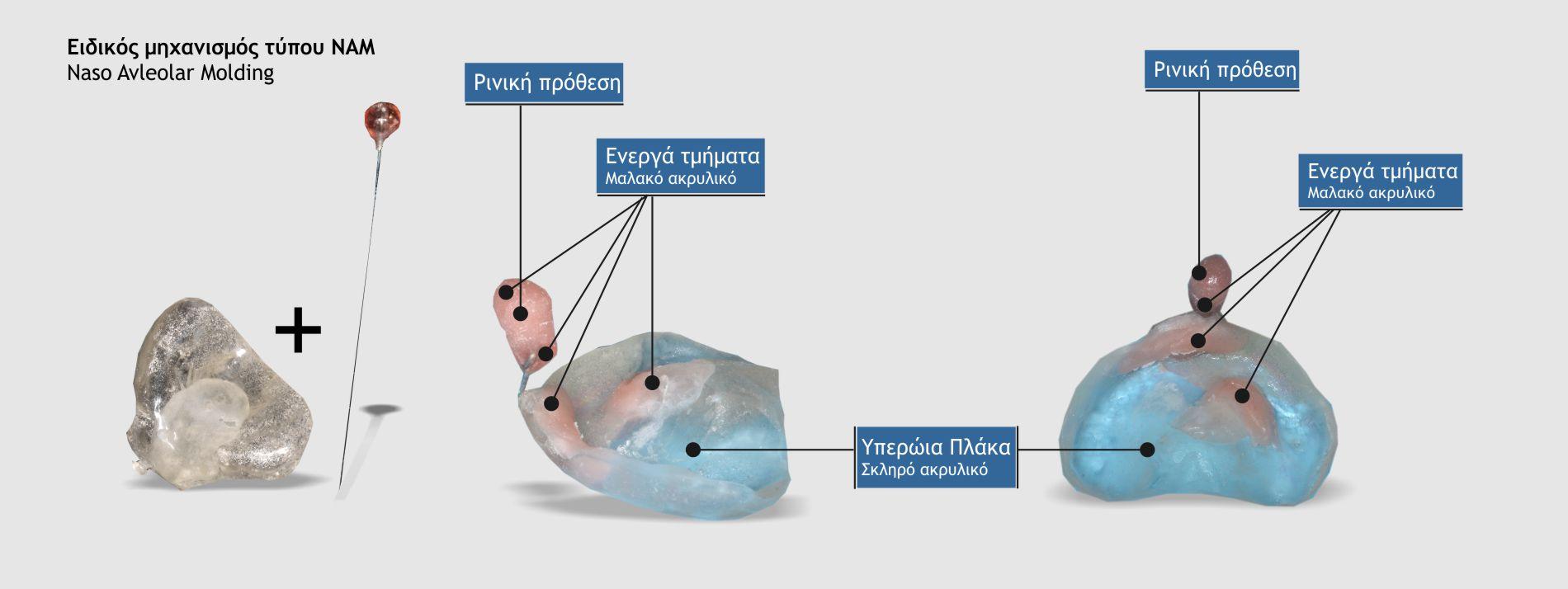 Τα μέρη του μηχανισμού τύπου ΝΑΜ